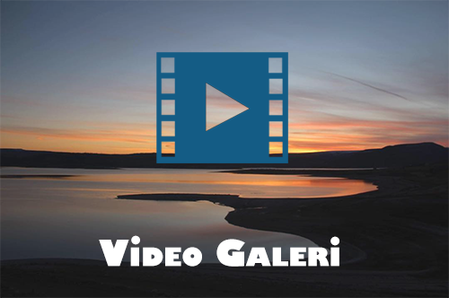 Günyüzü Video Galeri